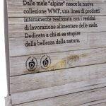 73_franco-cosimo-panini_4
